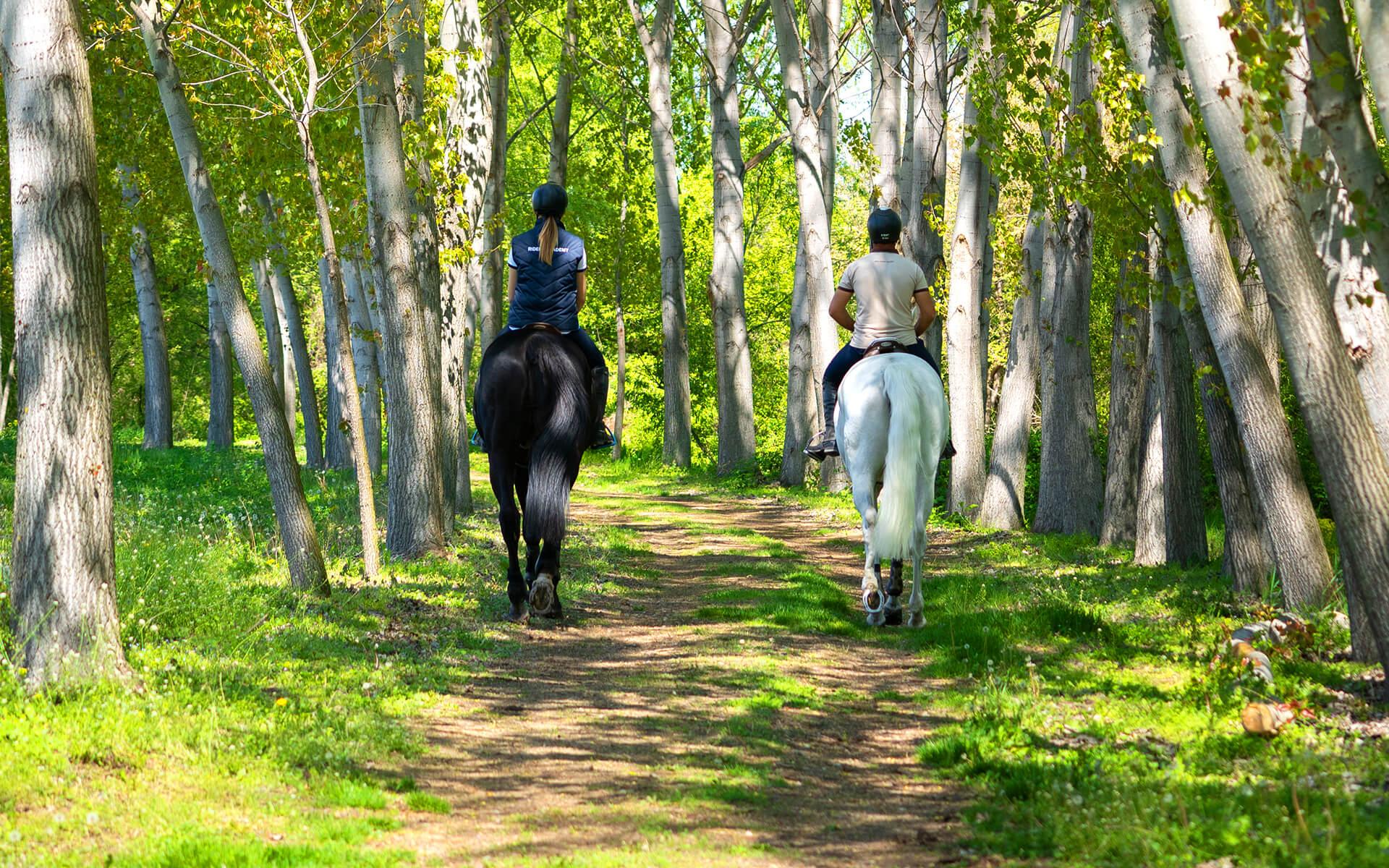 Влюбени, яздещи коне в гората